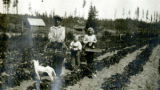 Buster (Hoppie's dog), , unknown person, Bob Baker and Dorothy Hopkins, Blyn, WA, ca. 1921